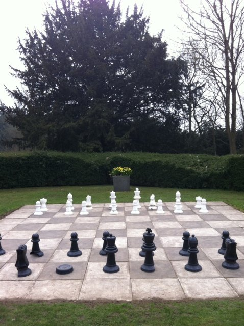 photo chess or decision and will
